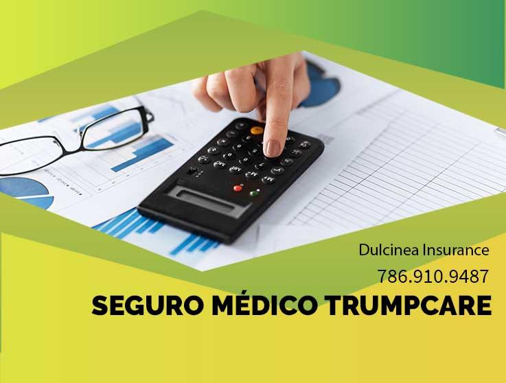 Seguro de salud trumpcare - Dulcinea Insurance Agency